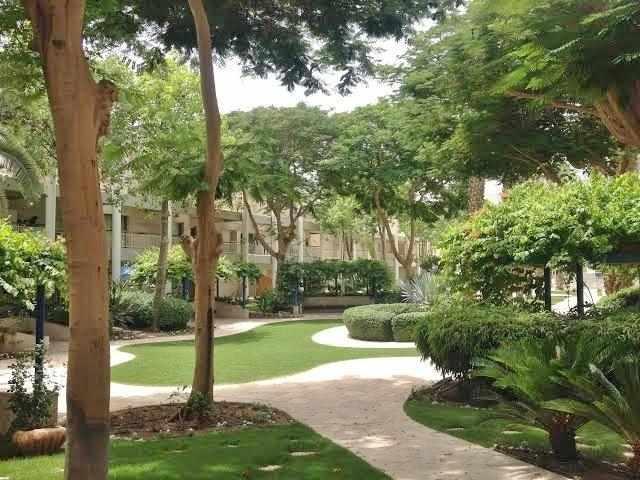 עצים וגינות במלון רויאל פארק